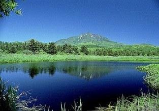 利尻島 南原湿原 04'6