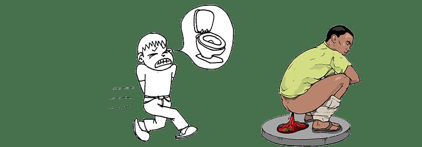horse gi diagram 1998 chevy silverado parts diarrhea – defenderauto.info