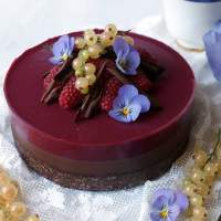 Chocolate Raspberry Bavarois (vegan & grain-free)