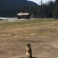 Lightning Lake, E.C. Manning Provincial Park, British Columbia