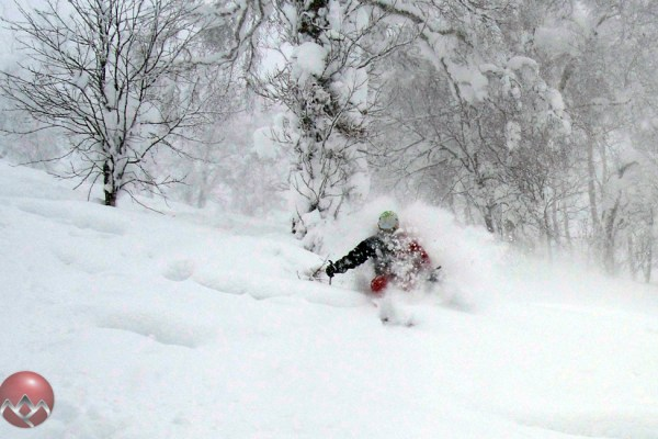 Another typical Niseko face shot