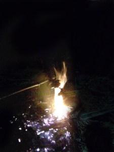 আগুনে পুড়ছে কাঠিতে লাগানো মাছ (ছবি: নাসিম আহমেদ)