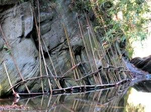 পদ্মঝিরি ধরে একটু ভিতরে গেলে এই সাঁকোটা বেশ আকর্ষণীয় (ছবি: দানিয়েল)