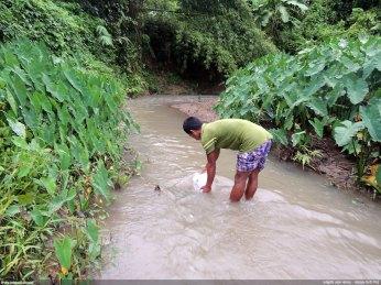 চান্দা পাড়ায় খাবার পানি সংগ্রহ - নিশাচর