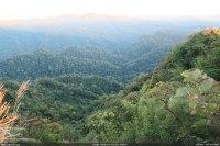 যোগী হাফং থেকে দেখা প্রাকৃতিক বনাঞ্চলসমৃদ্ধ পাহাড়ি জনপদ (ছবি: মোহন)