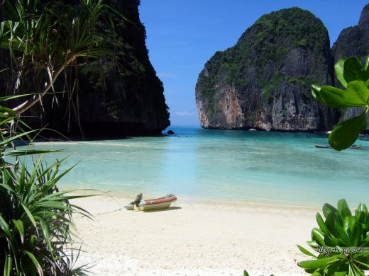 The phenomenal beach in the movie is actually Phi Phi Island