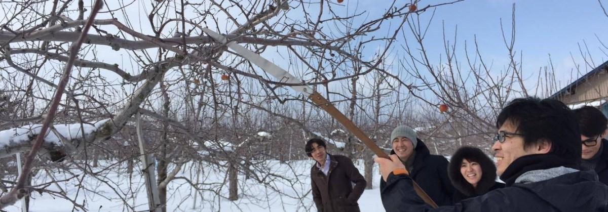 剪定はエンターテイメント!真冬のりんご畑でモツ焼きランチ!