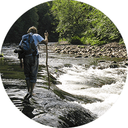 crossing mineral creek