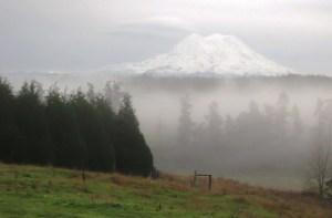 Mt. Rainier above the fog