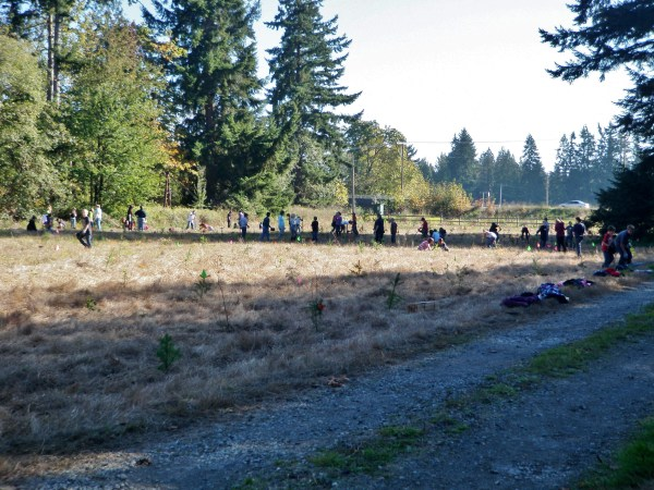 Students planting the Yelm work site in 2010