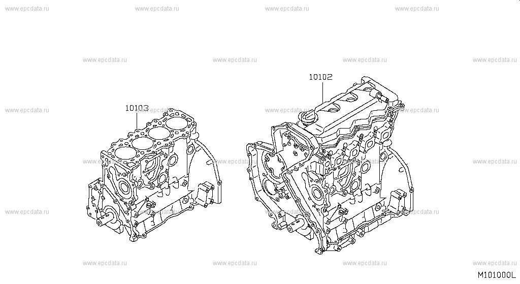 Buy genuine engine and fuel system for Nissan Navara 2