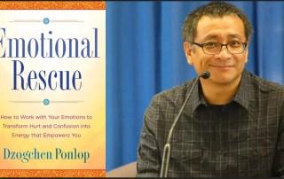 Dzogchen Ponlop Rinpoche, Emotional Rescue Book