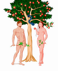 Fringe Adam and Eve