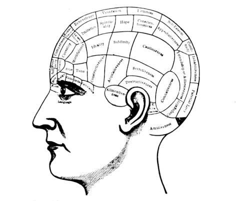 Dario Taraborelli: Cognitive Modularity
