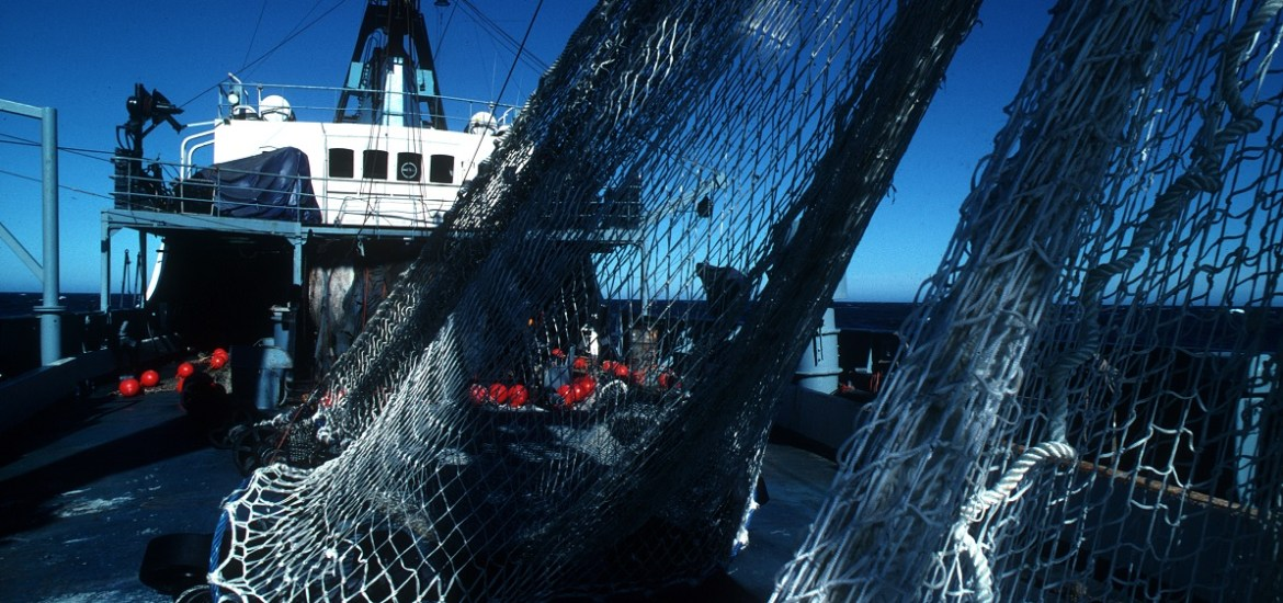 Australian fishing nets on ship (B. Fulton CSIRO)
