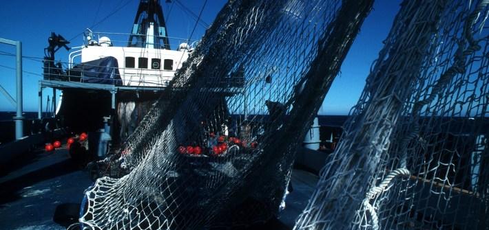 Australian fishing nets on ship (B. Fulton CSIRO)