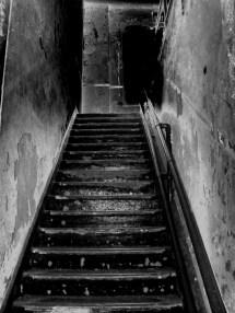 Creepy Dark Basement Stairs