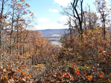 A clear view at the Flat Rock Overlook