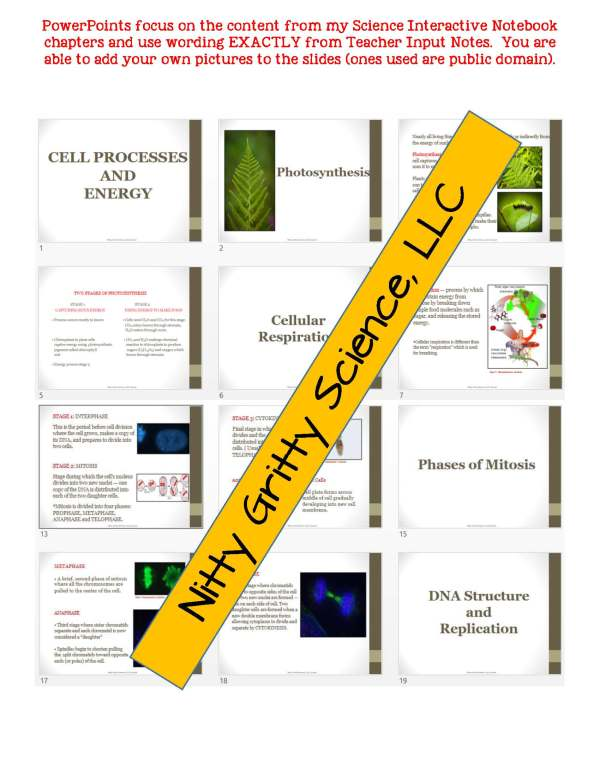 2348848 Page 5 - Cell Processes and Energy Life Science Notes, PowerPoint & Test~ EDITABLE