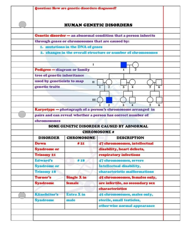 2354801 Page 3 - Modern Genetics: Life Science Notes, PowerPoint and Test ~ EDITABLE
