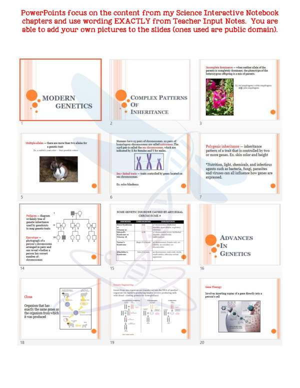2354801 Page 5 - Modern Genetics: Life Science Notes, PowerPoint and Test ~ EDITABLE