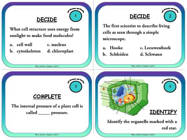 Cell Structure and Function Page 03 Copy - Cells: Structure and Function - Life Science Task Cards