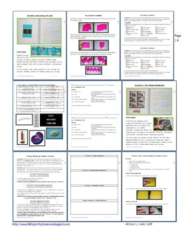 Demo Cell Structure and Function Page 4 1 - Life Science Interactive Notebook - The Complete Bundle for an Entire Year