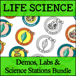 LS Station Bundle