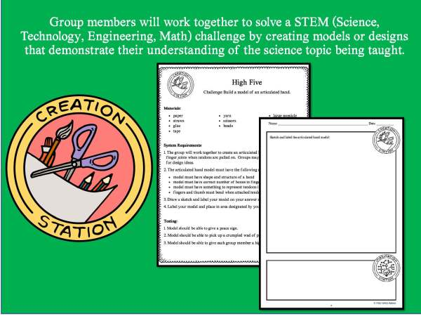 Preview Human Body Part 1 Page 10 - LIFE SCIENCE Demos, Labs & Science Stations BUNDLE