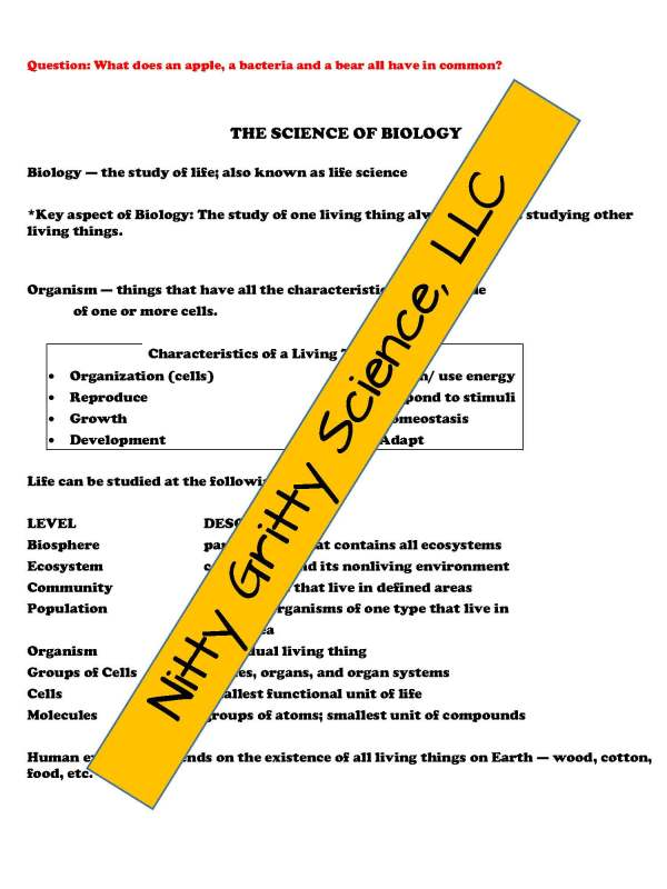 demoLifeScienceNotesPowerPointandTestIntrotoLifeScienceEDITABLE2302282 Page 4 - Intro to Life Science: Life Science PowerPoint, Notes and Test ~ EDITABLE!