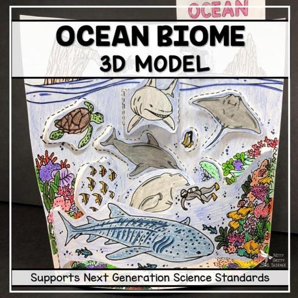 ocean biome model 3d model biome project featured image - Ocean Biome Model - 3D Model - Biome Project