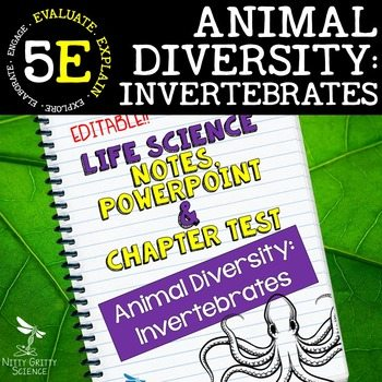 original 2398246 1 - Animal Diversity: Invertebrates Life Science Notes, PowerPoint & Test~ EDITABLE