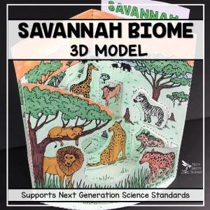 savannah biome model 3d model biome project featured image - Savannah Biome Model - 3D Model - Biome Project
