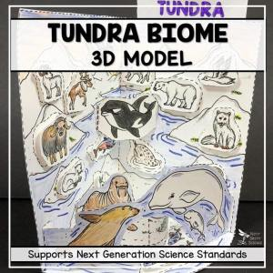 tundra biome model 3d model biome project featured image - Tundra Biome Model - 3D Model - Biome Project