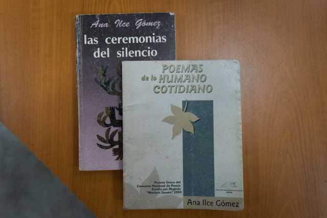 Ana Ilce Gómez