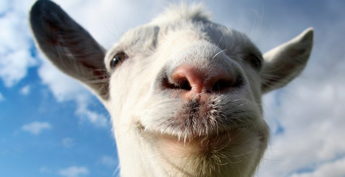 goat_simulator_feature