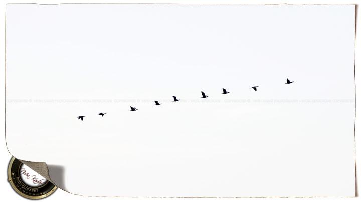SundayStills: In the Sky!