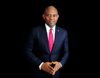 Let there be light in Africa, Tony Elumelu tells US congress
