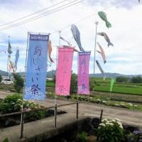 加茂川親水公園 ⇒ アジサイを見ながらゆっくり散歩