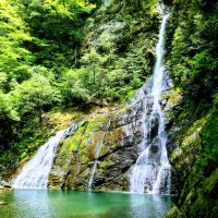 飛龍の滝 ⇒ 仁淀ブルーを彩るファミリー向けの滝