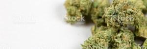 Cannabis Law