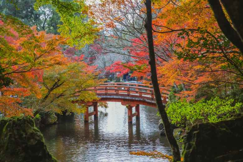 arched bridge over calm lake in japanese park