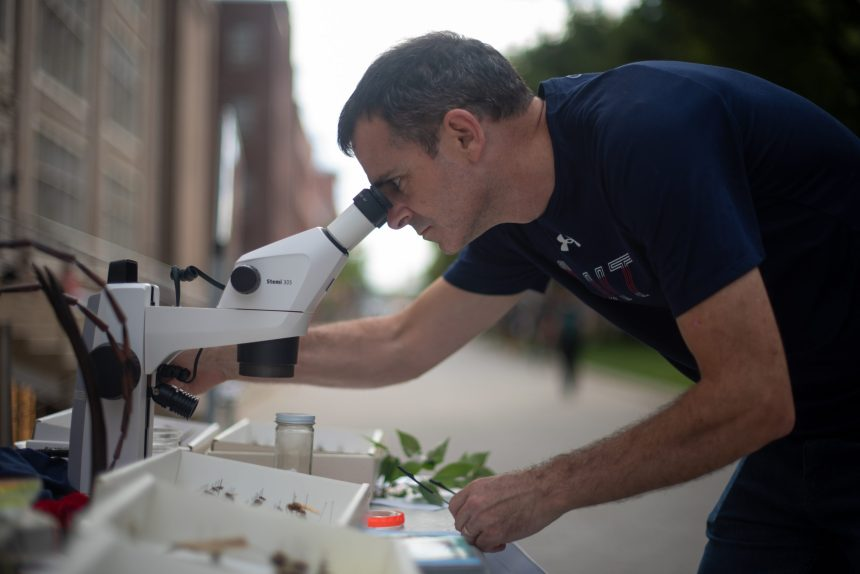 BioBlitz: On the hunt for plants and animals