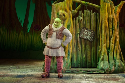 big_bright_beautiful_world_with_perry_sook_as_shrek_l_vr_1