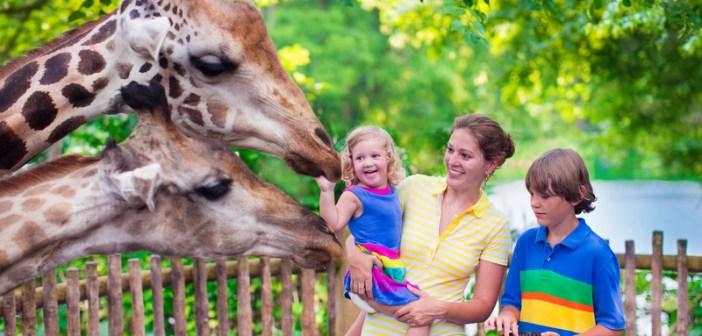 zoos in nj