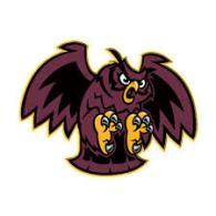 Image result for park ridge owls