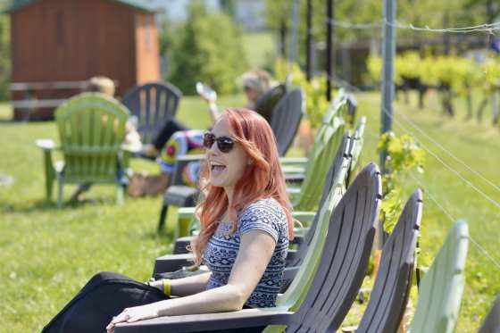 Wineries To Explore in New Jersey