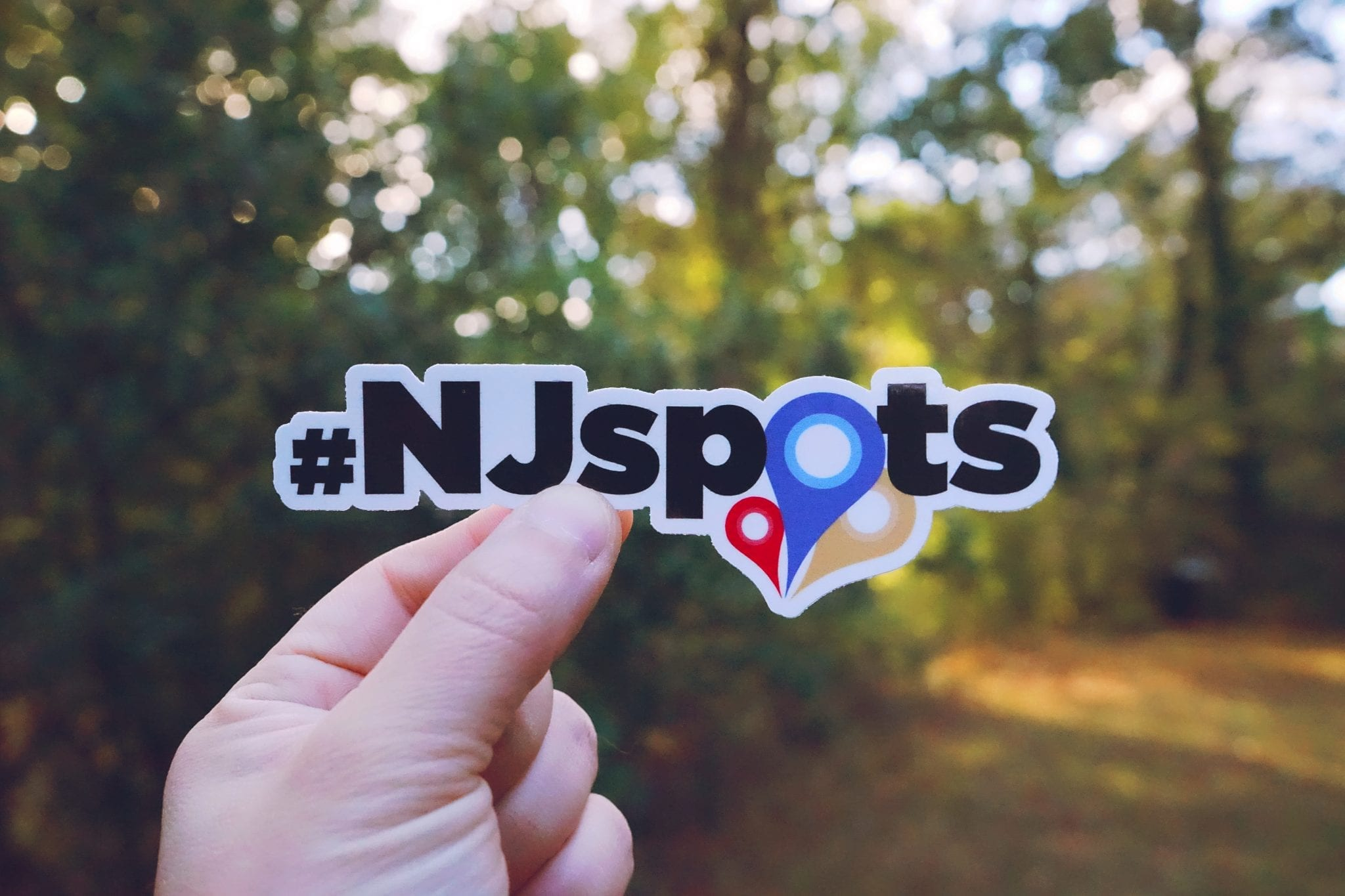 In Review: 2019 Top NJspots & Numbers