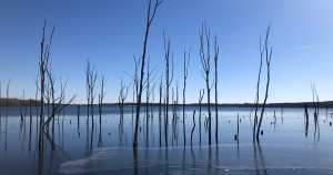 Read more about the article The Best Spots at Manasquan Reservoir