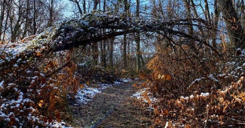 2020 NJspots Winter Photo Contest Winners Announced!